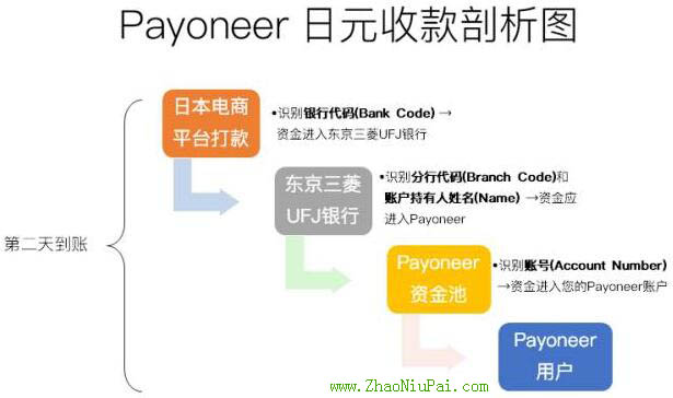 Payoneer日元收款剖析图