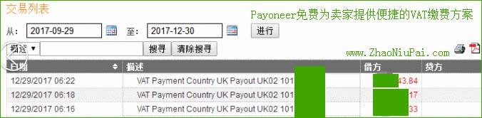 在Payoneer后台查询VAT缴费记录